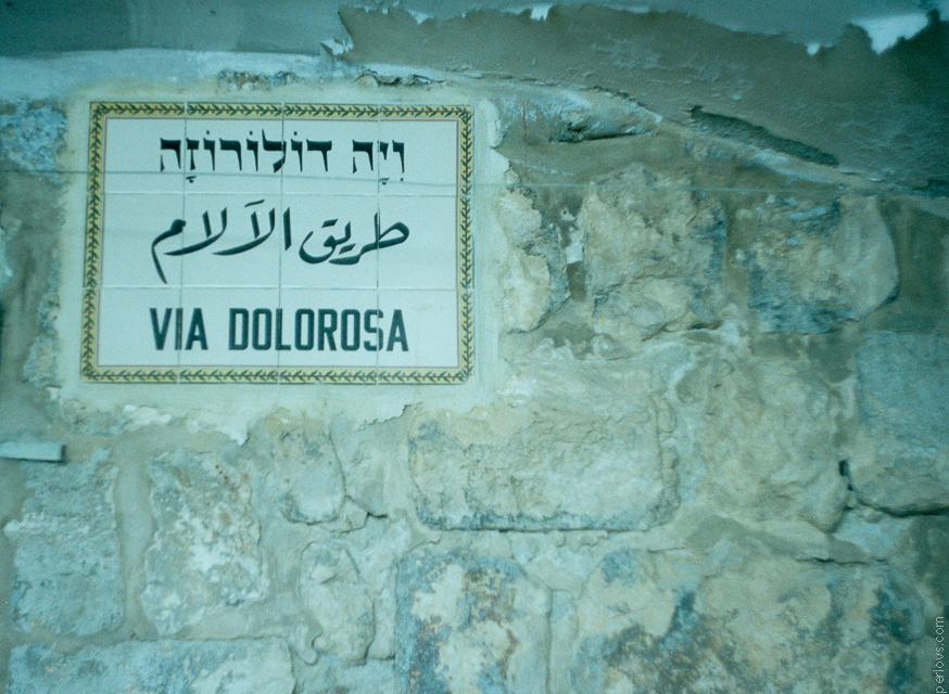 1011_1110_Израиль_0019